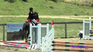 246S Kirsten Van Solinge Open Beginner Novice Show Jumping Shepherd Ranch June 2015
