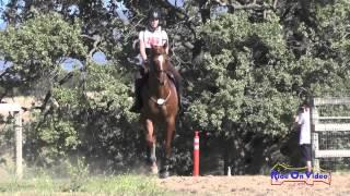 260XC Ava Albanese On Ollie 500 Intro Cross Country Shepherd Ranch June 2015