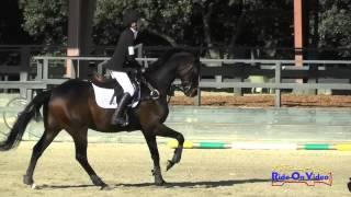 427S Sophie Tice On Mojo JR Training Show Jumping Woodside May 2015