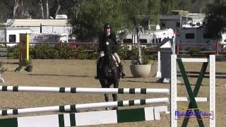 012S Barbara Crabo on Lickity Split Intermediate Show Jumping Copper Meadows March 2014