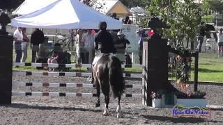 139S Becky Farrell on Gia Open Preliminary Show Jumping The Event at Rebecca Farm July 2014