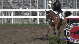 173S Matthew Brown on Che Landscape Open Training Show Jumping FCHP February 2015