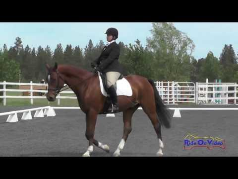 144D Tina Waters On Peregrine SF Open Novice Dressage Spokane Sport Horse HT May 2016