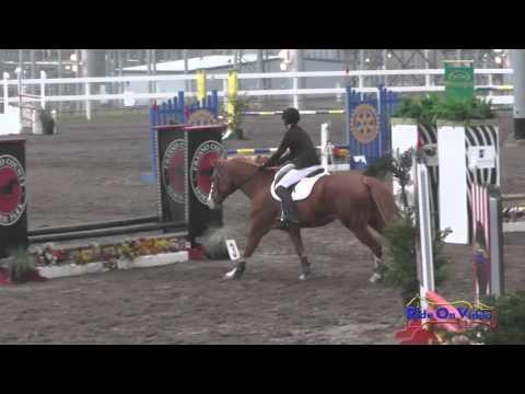 219S Dominic Arrabit On My Remedy Intro Show Jumping FCHP November 2015