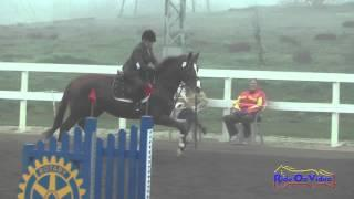 042S Sandy Boling on V.E. Whatta Good Time Open Novice Show Jumping FCHP January 2015