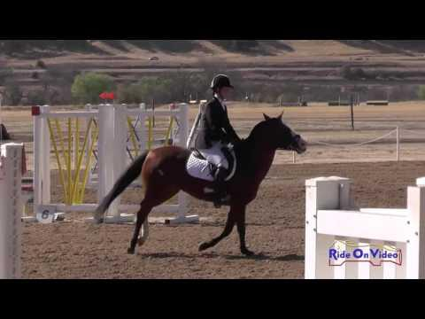 373S Emilie Christian On Emily My Inspiration Intro Show Jumping Twin Rivers Ranch Sept. 2016