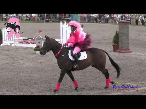 Halt Cancer At X Fundraiser Sarah Broussard Show Jumping Rebecca Farm July 2015