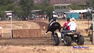 120XC Frankie Thieriot on Chatwin Open Preliminary Cross Country Copper Meadows June 2014