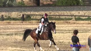 035XC Sandy Boling Preliminary Rider Cross Country Fresno County Horse Park April 2014