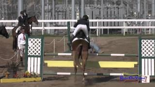 081S Sonya Bengali on Gershwin H.H. JR/YR Open Preliminary Show Jumping FCHP February 2015