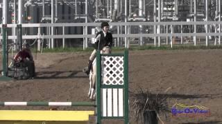 287S Peyton Rogers on Contessa Intro Show Jumping FCHP February 2015