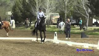 427D Tamra Smith on No App for That YEH 4Yr Old Dressage Twin Rivers Ranch April 2015