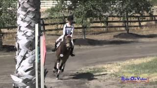 239XC Gabriella Yuschenkoff On Coco Chanel Intro Cross Country Galway Downs May 2015