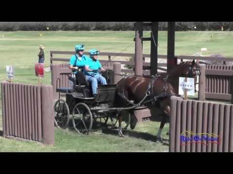 053M Alice Simpson Preliminary Single Horse Marathon Shady Oaks September 2016