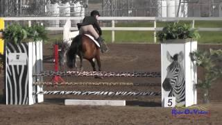 201S Natasha Miro on Mypromisetwojoan JR Novice Show Jumping FCHP February 2015