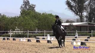 202D Mia Farley on Just a Mystery Open Novice Dressage Copper Meadows June 2014