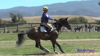 243XC Jolie Wentworth On Peroni Open Beginner Novice Cross Country Shepherd Ranch June 2015