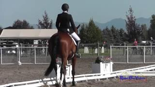 320D Laura Pauly On Winston Higgins SR Training Dressage The Event At Rebecca Farm July 2015