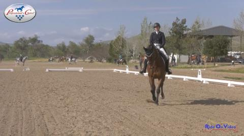 CCI4* Short Dressage Twin Rivers Ranch September 2019