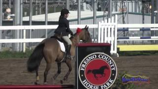 205S Lauren Jameson on Formula One JR Novice Show Jumping FCHP February 2015