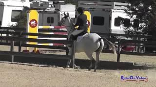 029S Gina Miles on Contalli Di Revel CIC1* Show Jumping Woodside Int'l Event Oct 2014