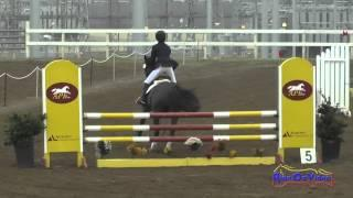 058S Katie Millican on Mercedes Open Training Show Jumping FCHP January 2015