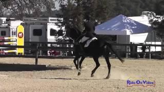 041S Frankie Thieriot on Chatwin CIC1* Show Jumping Woodside Int'l Event Oct 2014