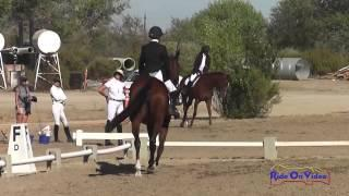375D Cassidy Wallace Intro Dressage Twin Rivers Ranch September 2013