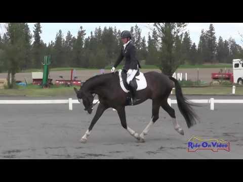 213D Leigh Mesher On Finally DG Open Training Dressage Spokane Sport Horse HT May 2016