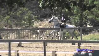 099XC Ari Kann On Carbonado Preliminary Rider Cross Country Shepherd Ranch June 2015