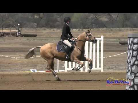 158S Katie Dillon On The Sundance Kid JR Novice Show Jumping Twin Rivers Ranch Sept 2015