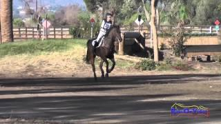 207XC Mia Farley on Just a Mystery JR Training Cross Country Galway Downs Int'l Event Nov 2014