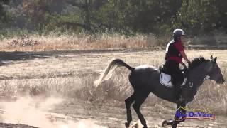 400XC Theresa Simmons on Fred SR Beginner Novice Cross Country Woodside Int'l Event Oct 2014
