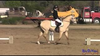 375D Balle Silveira Intro Dressage Twin Rivers Spring Event April 2013