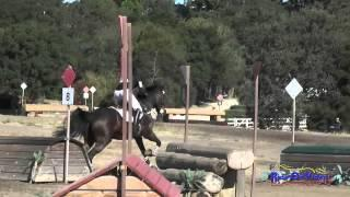 190XC Tanisha Naidoo On Beau Soleil SR Novice Cross Country Woodside August 2015