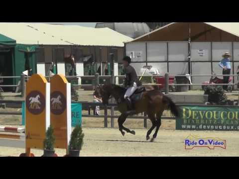 324S Josh Barnacle On CTR Trastevere Open Beginner Novice Show Jumping Woodside August 2016