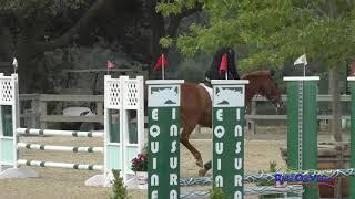248S Charles Campbell on Summer Daisy Novice Horse Show Jumping Woodside May 2021