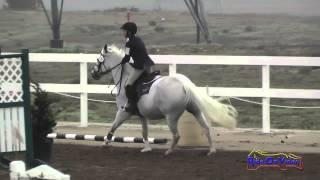 170S Jaya Mayne on Lady Viking JR Beginner Novice Show Jumping FCHP November 2014