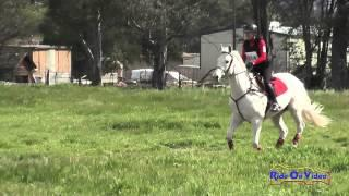214XC Dena Durelle on Sterling Credit SR Novice Cross Country Copper Meadows March 2015