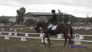 144D Attila Rajnai on Mercury Rose Training Horse Dressage Twin Rivers Ranch Sept 2014