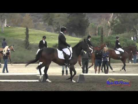 443D Clayton Fredericks On Quintano Open Novice Dressage Galway Downs November 2014