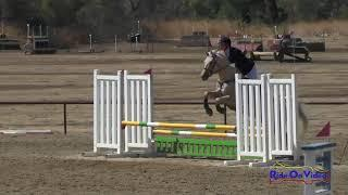 248S Kaila Flores on My Lucky Star SR Beginner Novice Show Jumping Twin Rivers Ranch September 2017